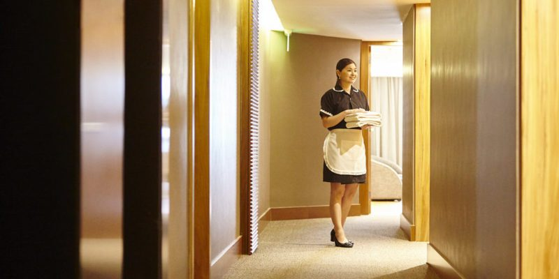 How To Stop Bed Bugs Playing Havoc In Your Hotel Hotel Owner